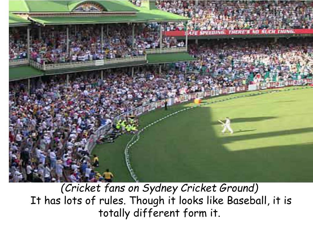 (Cricket fans on Sydney Cricket Ground)