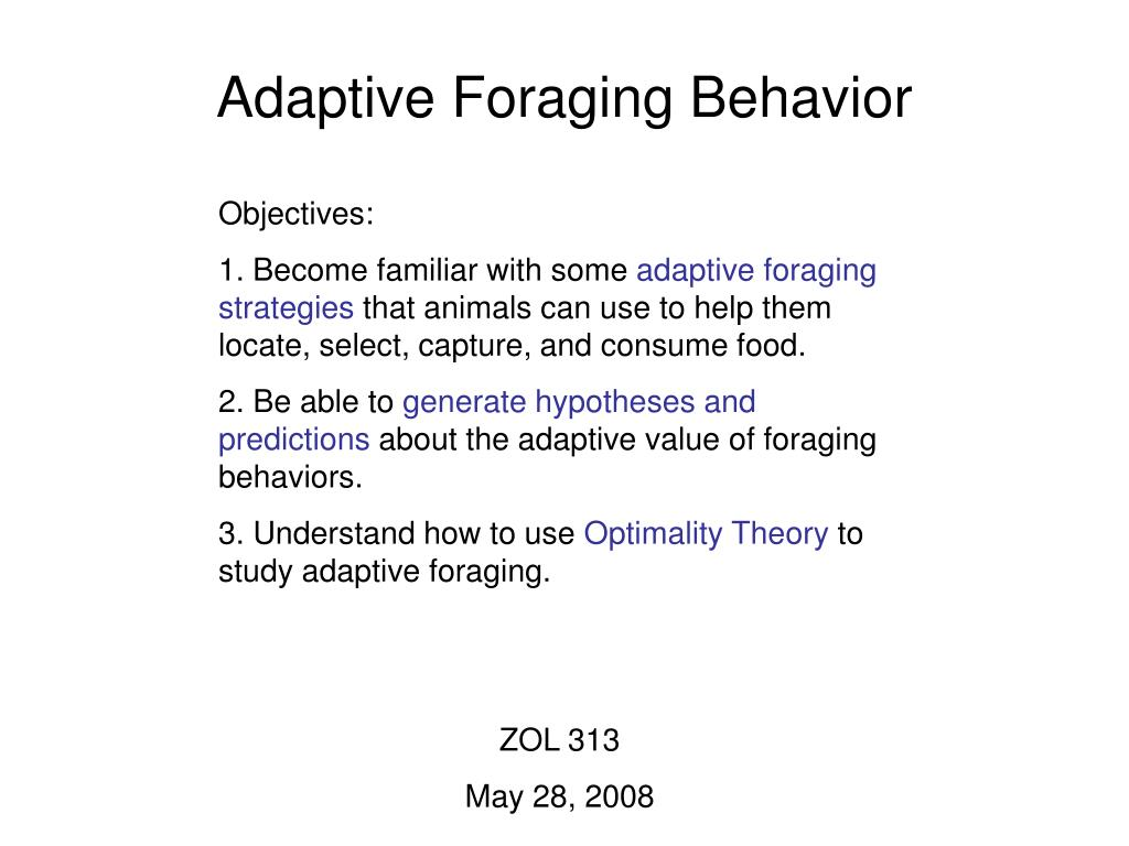 Adaptive Foraging Behavior