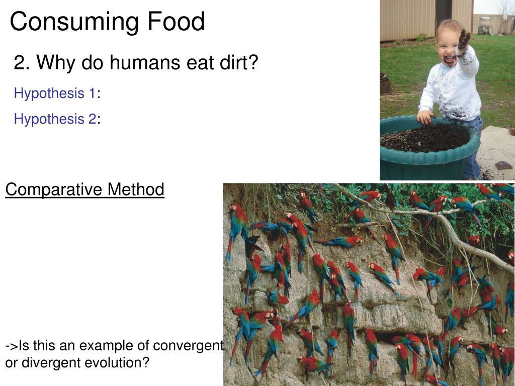 Consuming Food