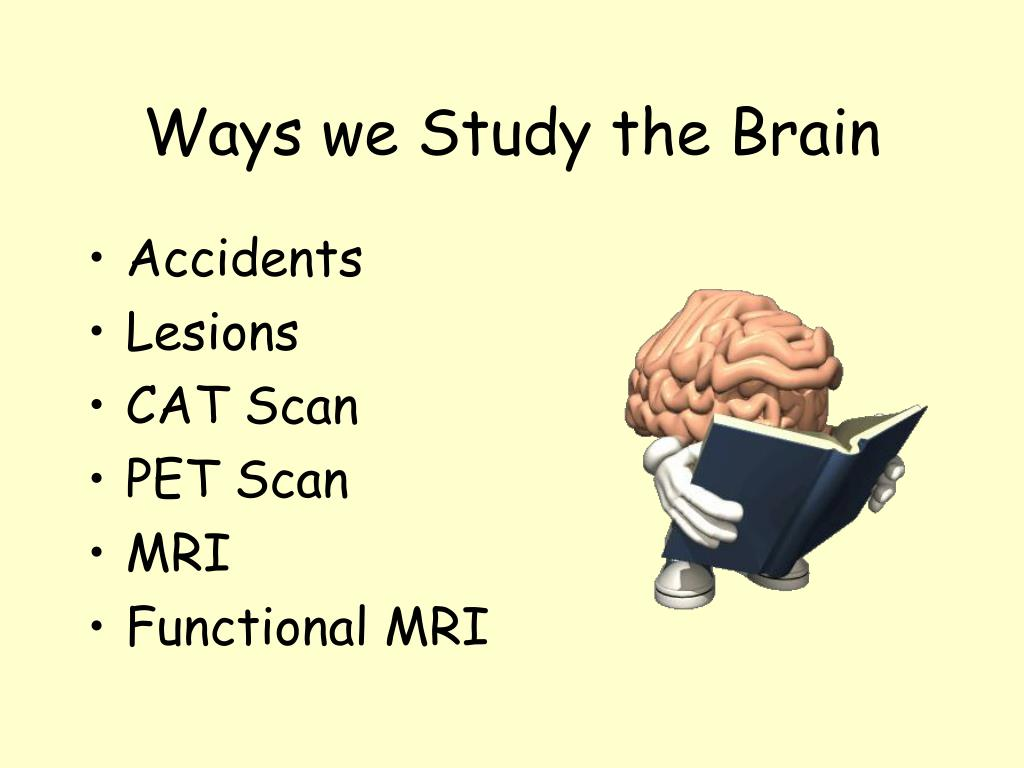 Ways we Study the Brain