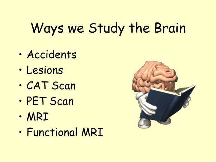 Ways we study the brain l.jpg