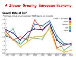 a slower growing european economy