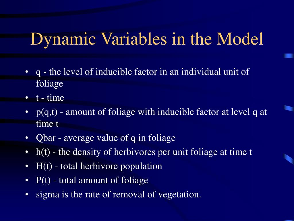 Dynamic Variables in the Model