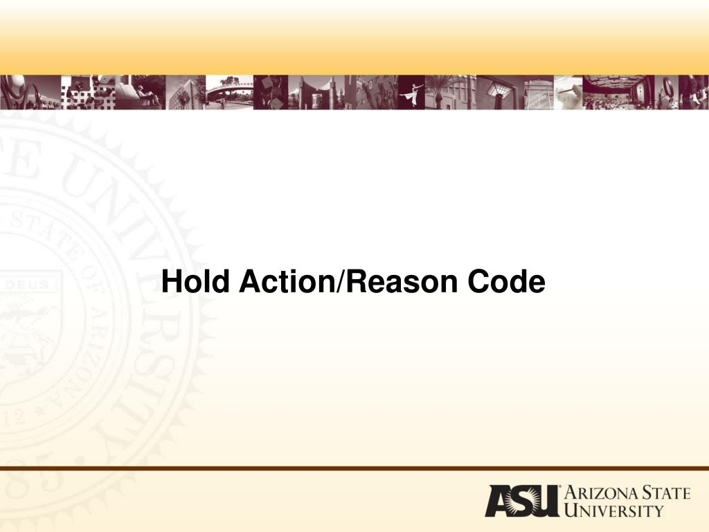 Hold Action/Reason Code
