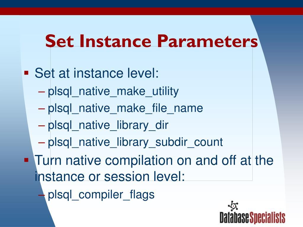 Set Instance Parameters