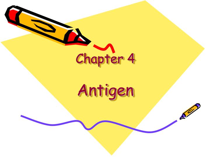 Chapter 4 antigen