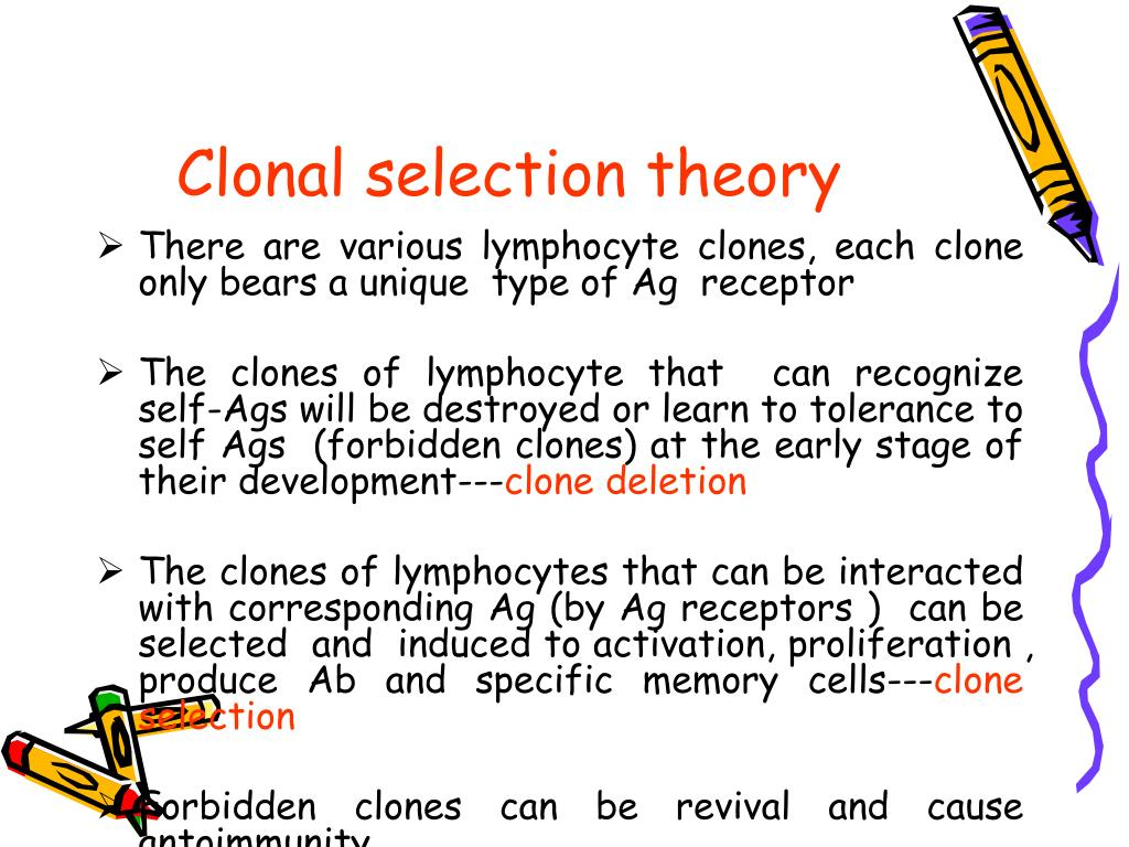 Clonal selection theory