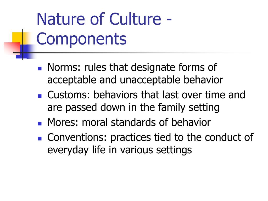Nature of Culture - Components