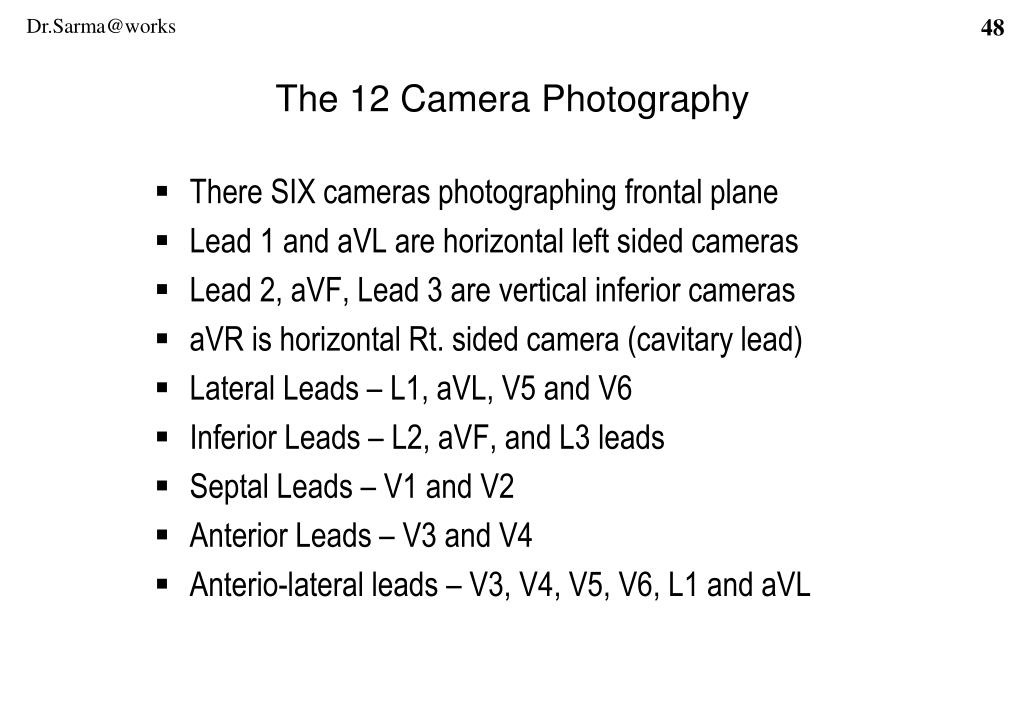 The 12 Camera Photography