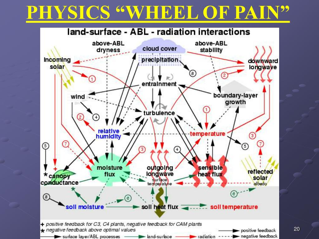 "PHYSICS ""WHEEL OF PAIN"""