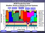 the jigsaw puzzle ncep production suite