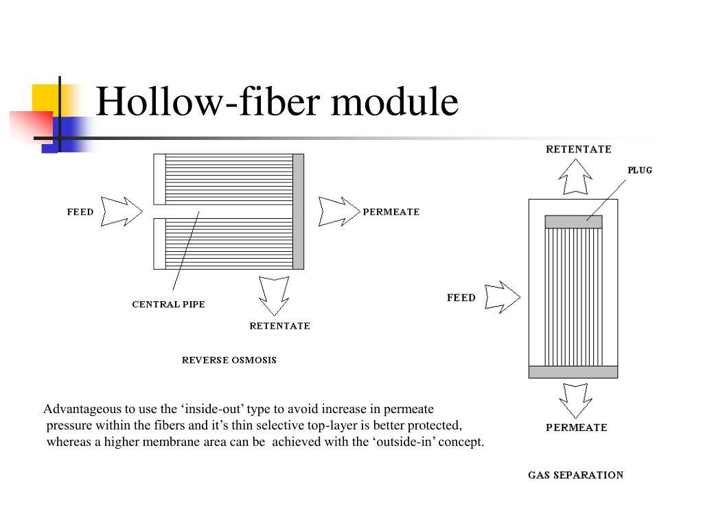 Hollow-fiber module