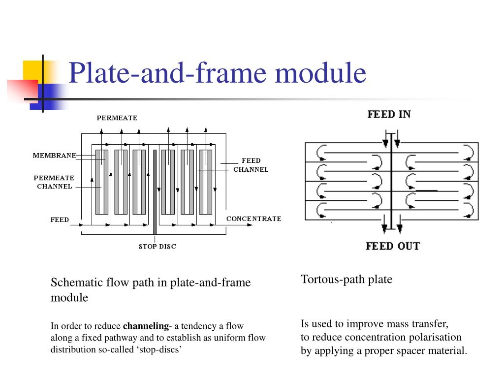 Plate-and-frame module