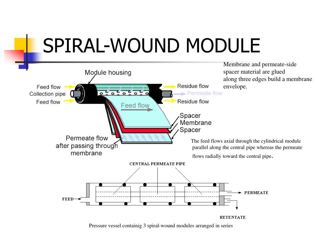 SPIRAL-WOUND MODULE