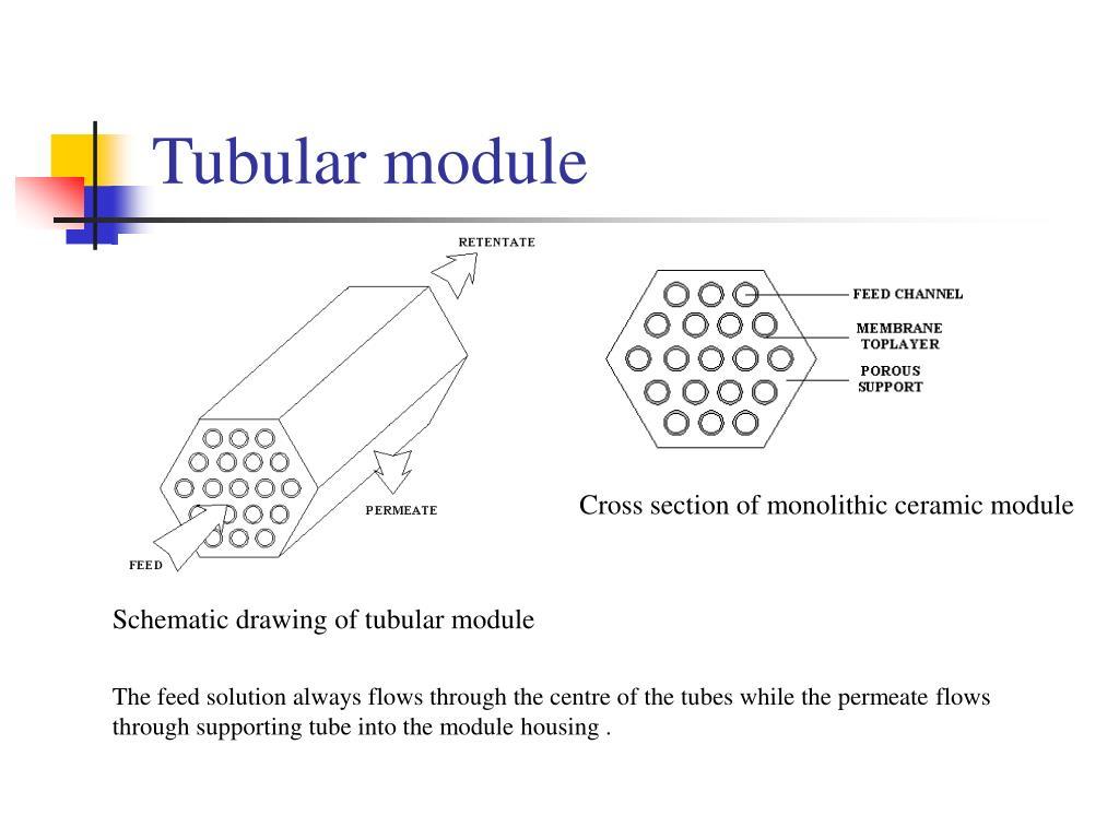 Tubular module