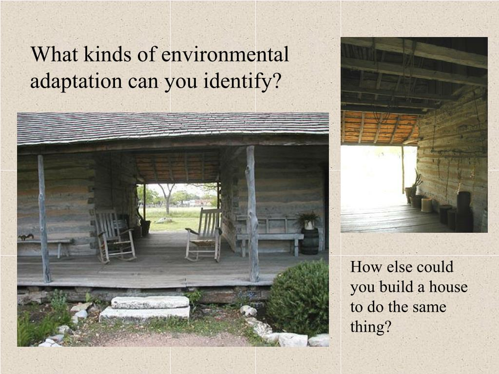What kinds of environmental adaptation can you identify?