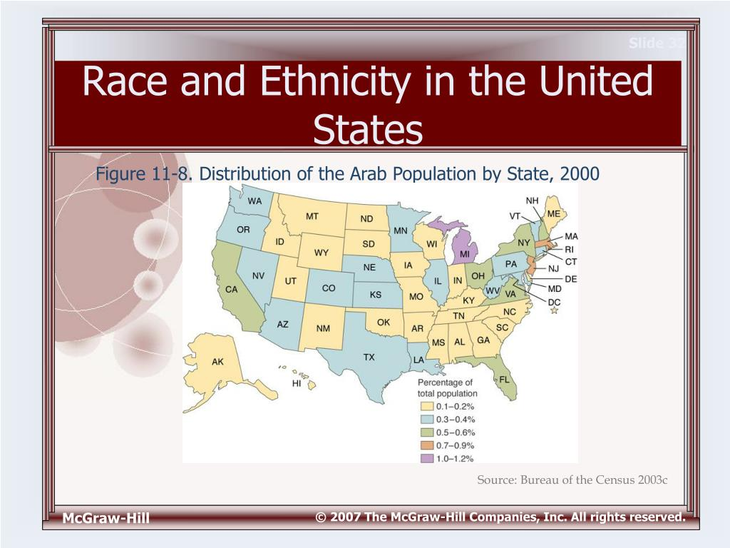 what race and ethnicity means essay