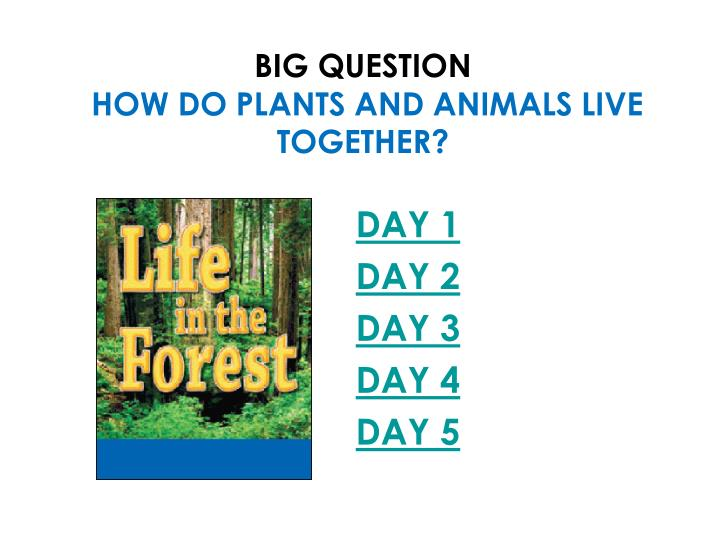 Big question how do plants and animals live together