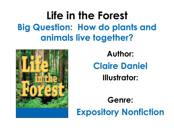 Life in the forest big question how do plants and animals live together l.jpg