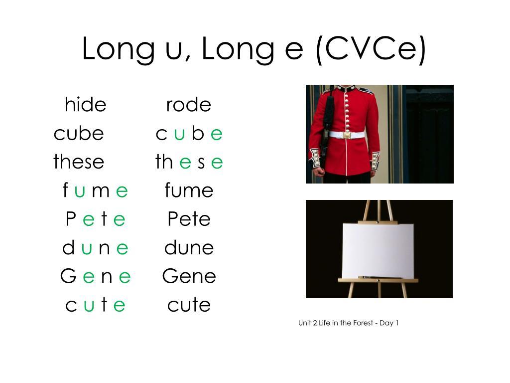 Long u, Long e (CVCe)