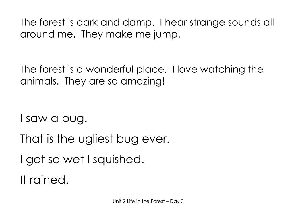 The forest is dark and damp.  I hear strange sounds all around me.  They make me jump.