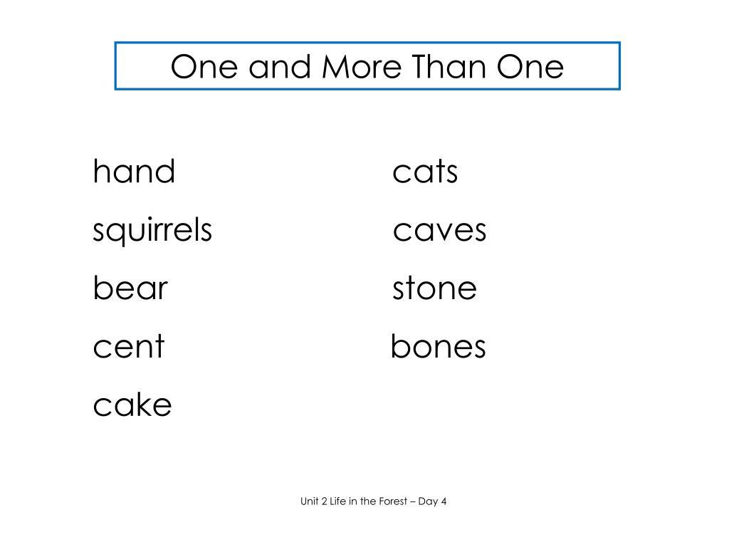 hand                        cats