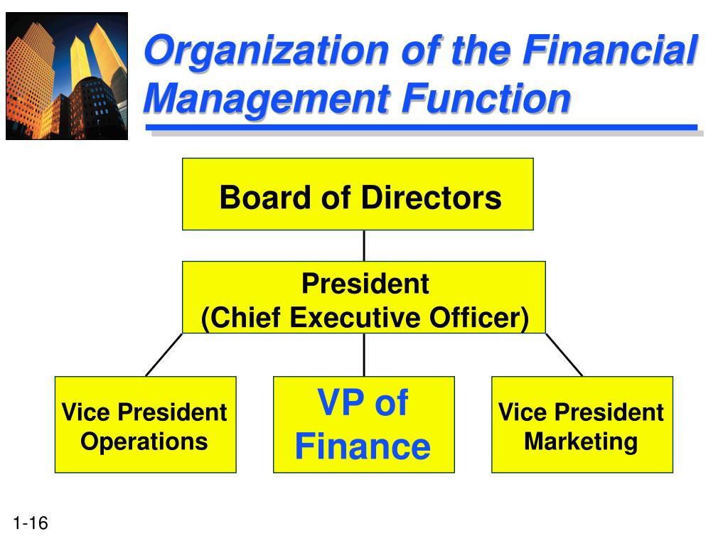 Organization of the Financial Management Function