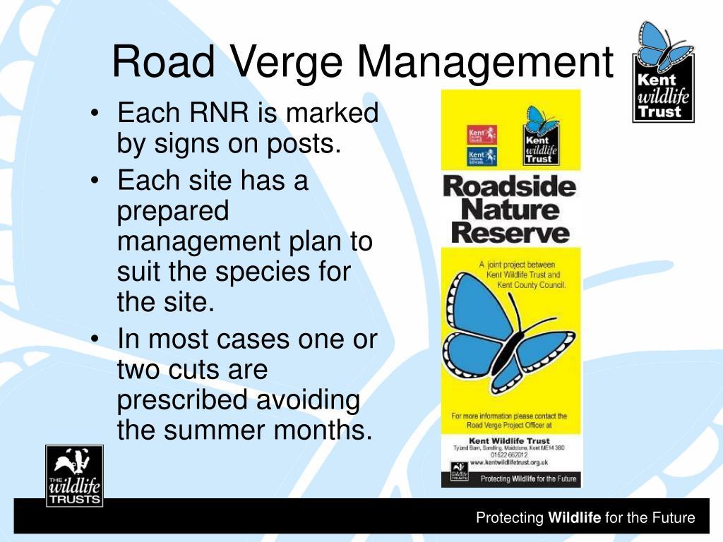 Road Verge Management