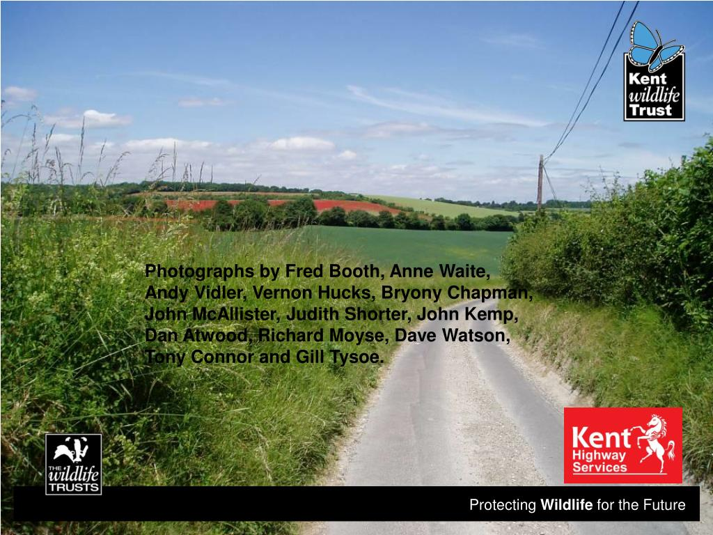 Photographs by Fred Booth, Anne Waite, Andy Vidler, Vernon Hucks, Bryony Chapman, John McAllister, Judith Shorter, John Kemp, Dan Atwood, Richard Moyse, Dave Watson, Tony Connor and Gill Tysoe.