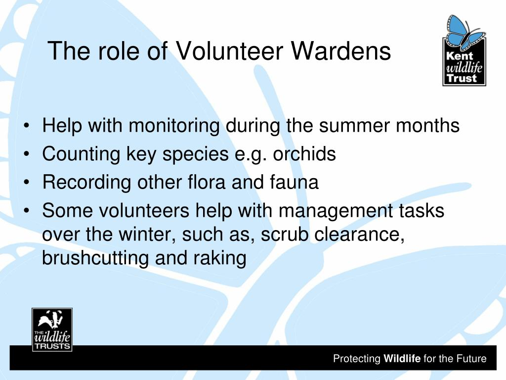 The role of Volunteer Wardens