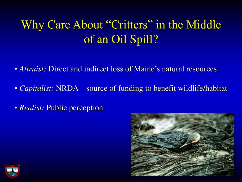 "Why Care About ""Critters"" in the Middle of an Oil Spill?"