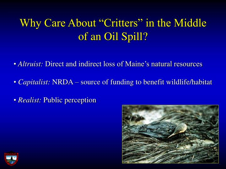 Why care about critters in the middle of an oil spill