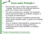issues under principle 2