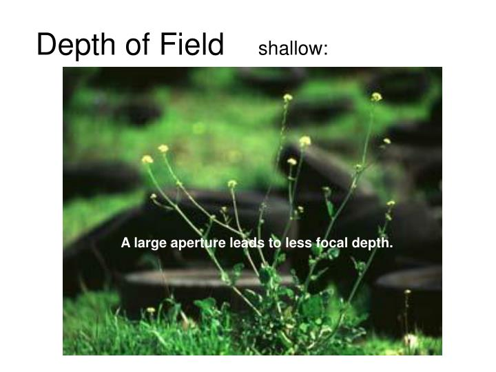 Depth of field shallow