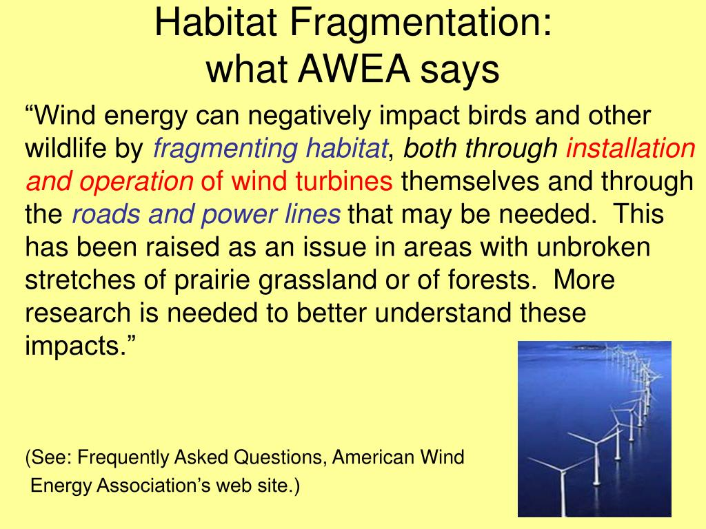 Habitat Fragmentation: