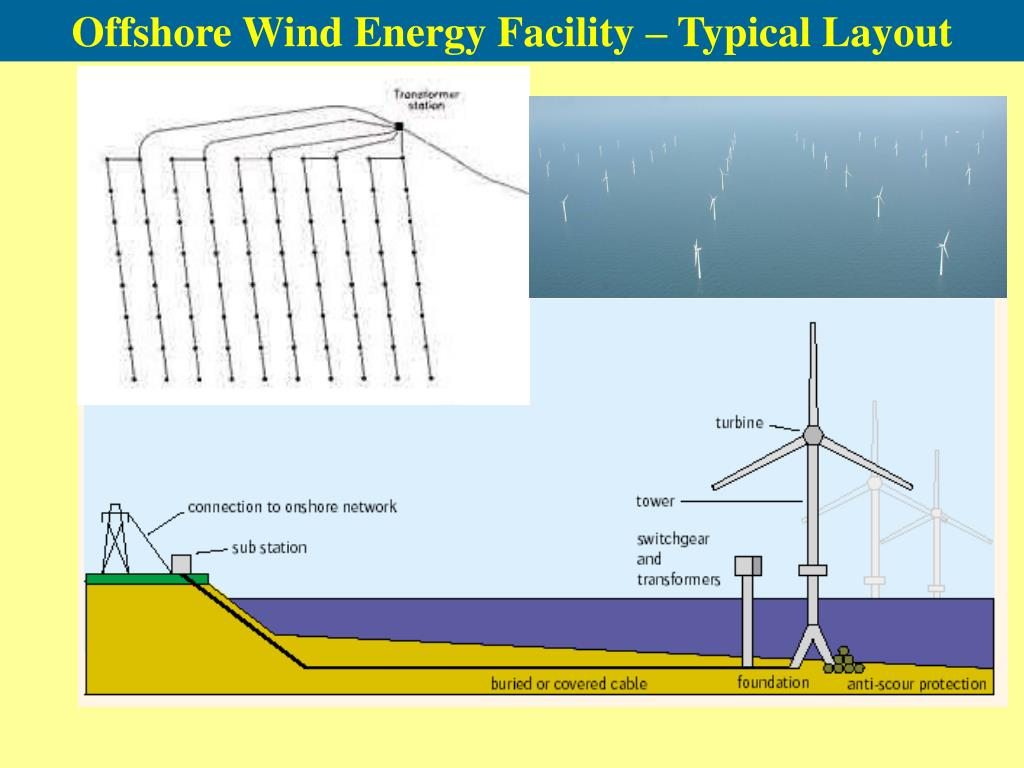 Offshore Wind Energy Facility – Typical Layout