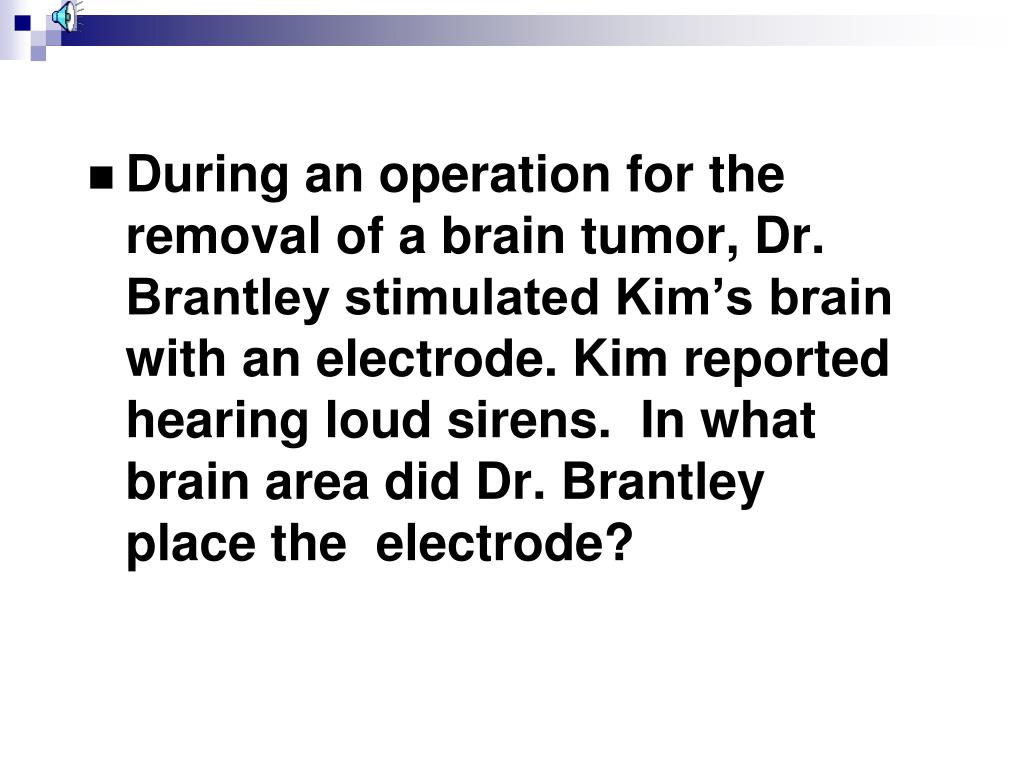 During an operation for the removal of a brain tumor, Dr.  Brantley stimulated Kim's brain with an electrode. Kim reported hearing loud sirens.  In what brain area did Dr. Brantley place the  electrode?