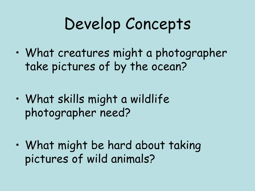 Develop Concepts