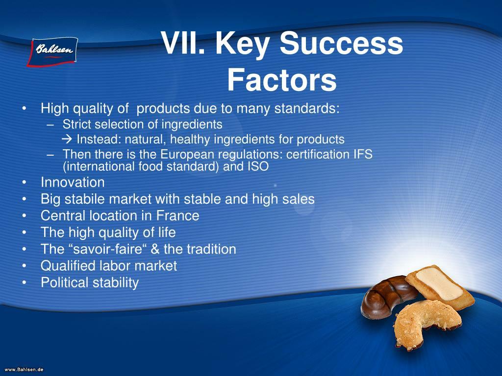 VII. Key Success Factors