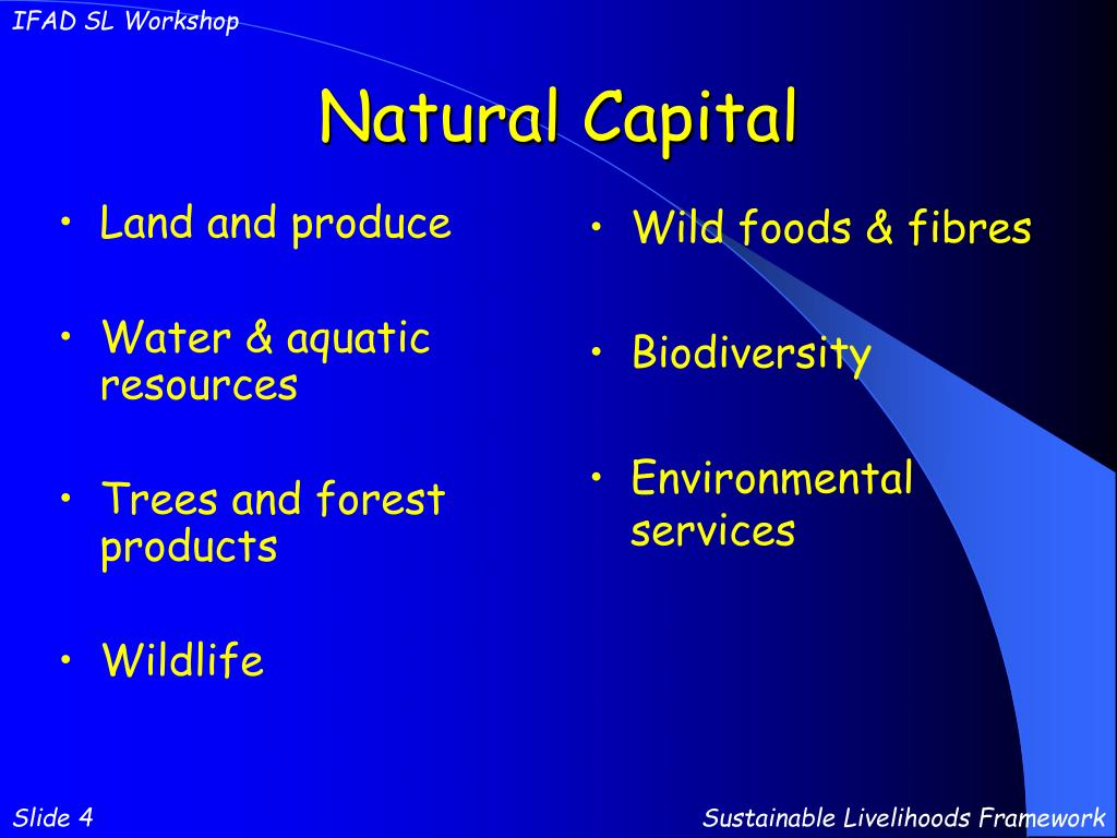 Natural Human And Capital Resources Powerpoint