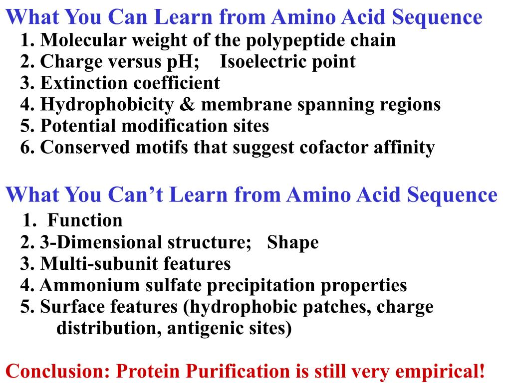 What You Can Learn from Amino Acid Sequence