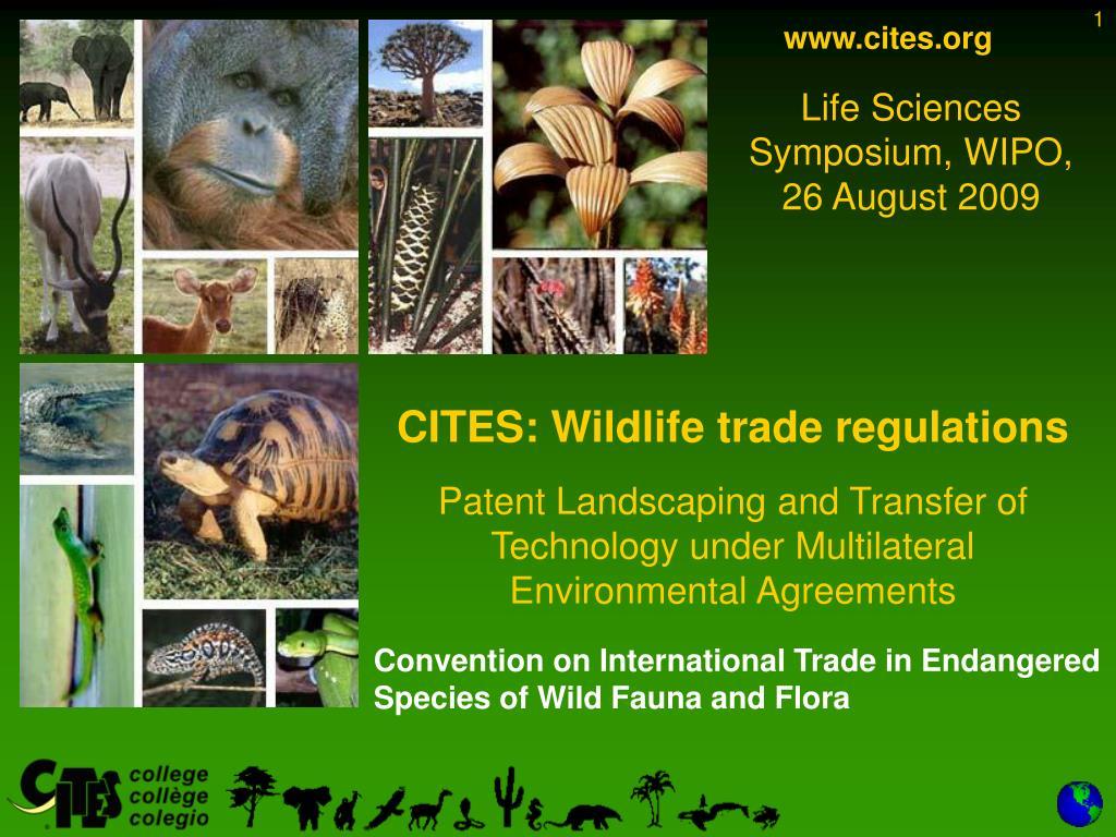 www.cites.org