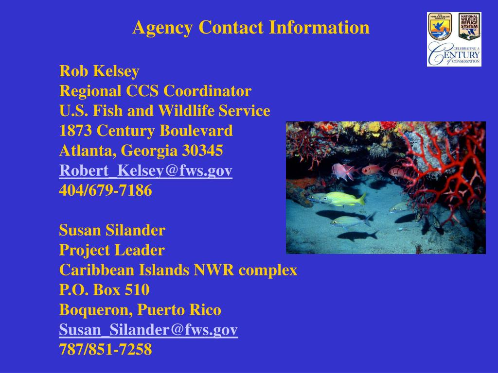 Agency Contact Information