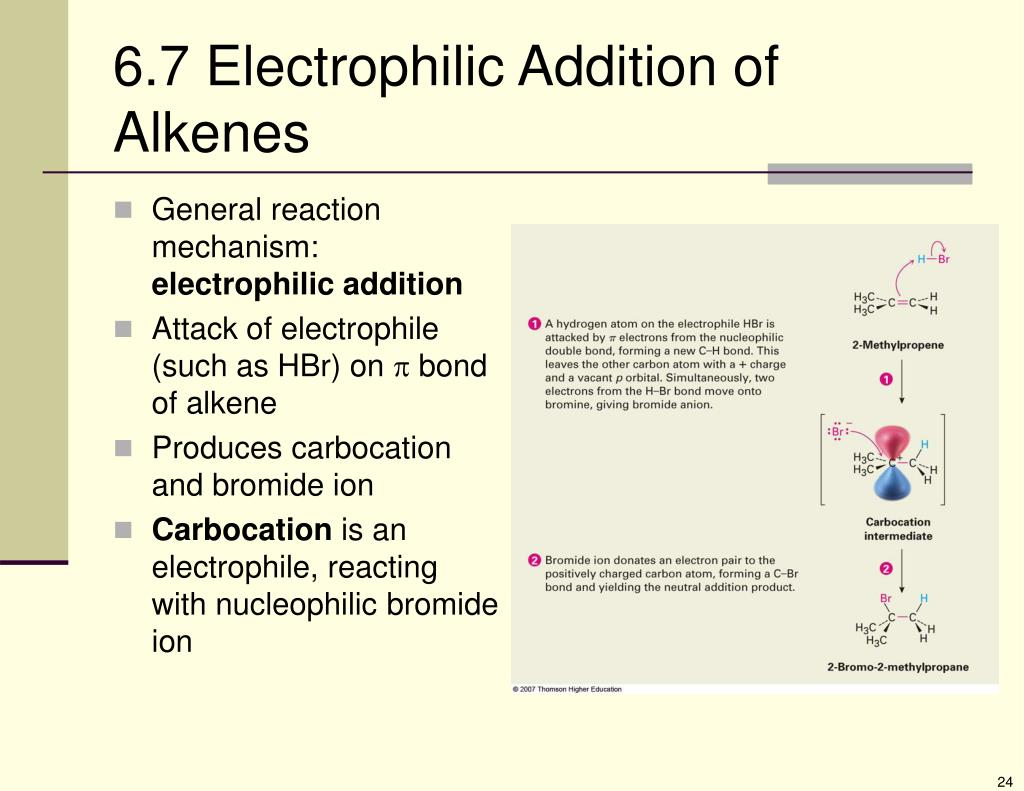 6.7 Electrophilic Addition of Alkenes