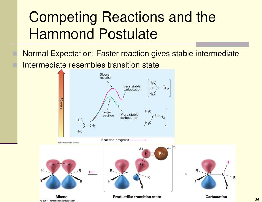 Competing Reactions and the Hammond Postulate