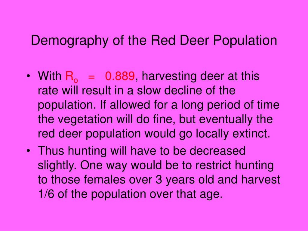 Demography of the Red Deer Population