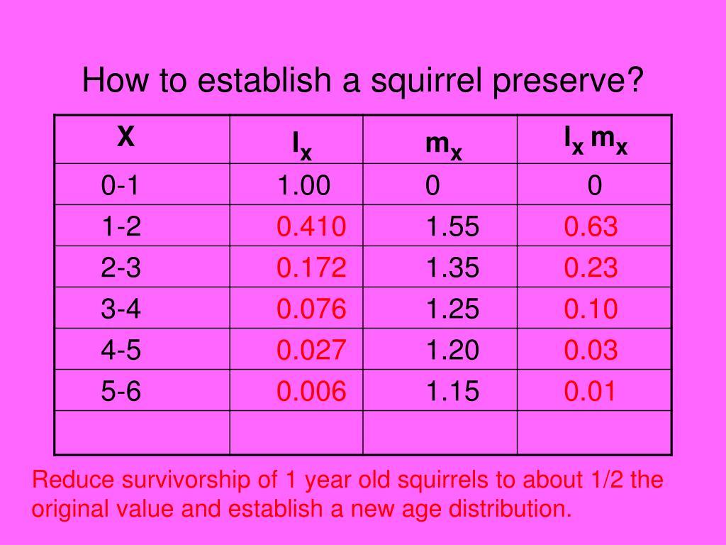 How to establish a squirrel preserve?