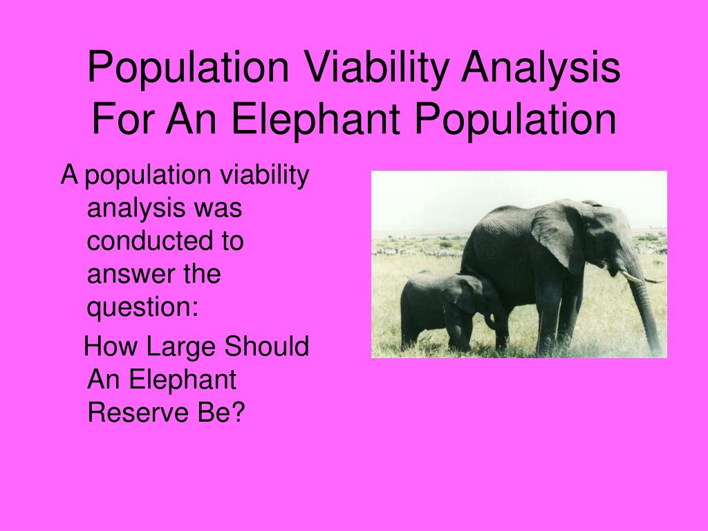 Population Viability Analysis For An Elephant Population