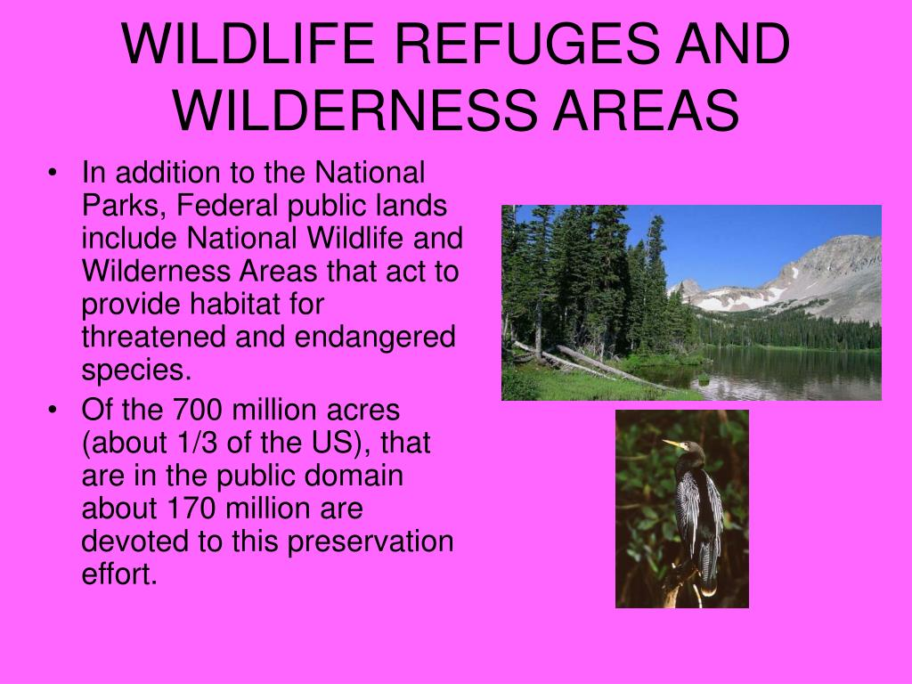 WILDLIFE REFUGES AND WILDERNESS AREAS