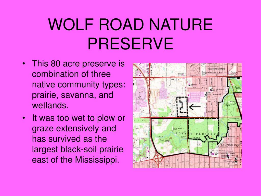 WOLF ROAD NATURE PRESERVE
